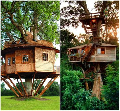 tree decor for home tree house decor home interior design kitchen and