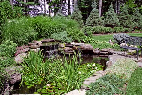 Beautiful Backyard Ponds by Pin Beautiful Small Pond And Water Plants For Garden Ideas On