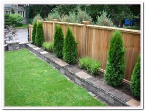 Fence Ideas For Small Backyard The Backyard Fence Ideas Home And Cabinet Reviews