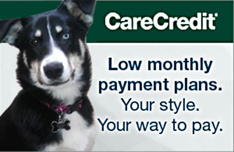 care credit for dogs carecredit pet care financing tucson rosemont pet clinic rosemont pet clinic
