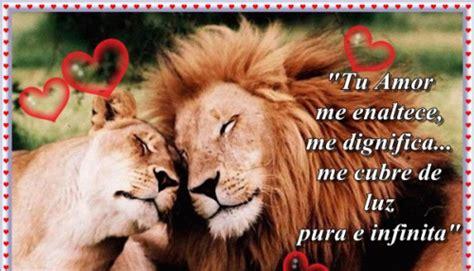 imagenes d leones con frases leon19