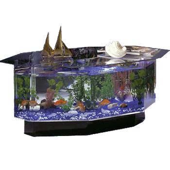 cool things to buy for your room 28 gallon aquarium coffee table oh my that s awesome