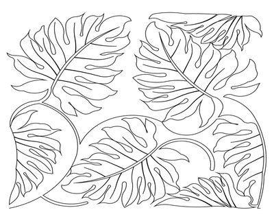 jungle vines coloring pages jungle vines coloring pages leaves grig3 org