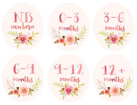 printable closet organizer tags baby girl infant clothing printable tags labels dividers for