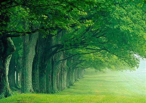 Di Ujung Pelangi pelangi di ujung cinta alam bersahaja