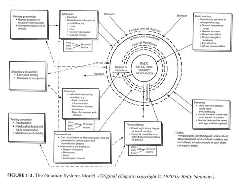 system model diagram betty neuman systems model diagram systems approach