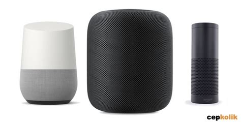 amazon echo vs google home which is the best smart speaker homepod vs google home vs amazon echo cepkolik com