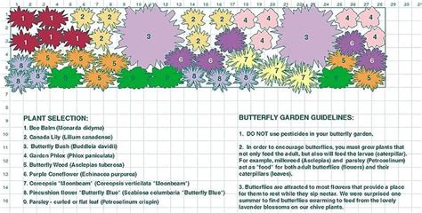 Butterfly Garden Layouts Bing Images Gardening Butterfly Garden Layout