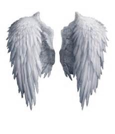 angel wings stock png by shadow of nemo d7j2t68 png