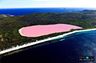 pink lake australia the remarkable pink lake hillier western australia s