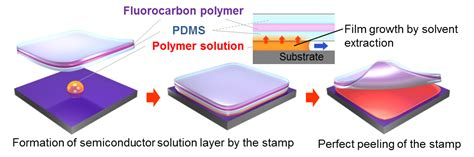 pattern formation by dewetting of polymer thin film a new technology for semiconductor film production on