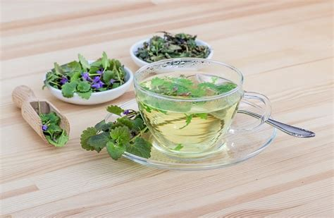 what can you give a for urinary tract infection 3 herbal tea for uti 1mhealthtips