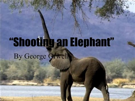 george orwell biography shooting an elephant week 2 freshman composition ppt video online download