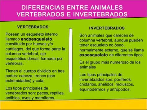 diferencias entre inductor e inducido cuadros comparativos animales vertebrados e invertebrados cuadro comparativo