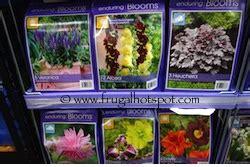 costco spring gardening deals  frugal hotspot