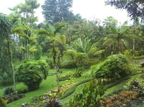 Wilson Botanical Gardens Costa Gardens Garden Travel Hub