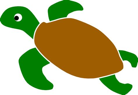 wallpaper cartoon turtle animated sea turtle wallpaper iphone wallpapersafari