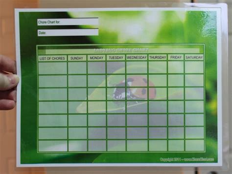 make your own chart 1000 images about laminator crafts on