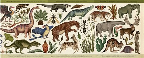 story of life evolution di katie scott big picture press 2015 creative books booktopia story of life evolution by scott katie 9781760400064 buy this book online