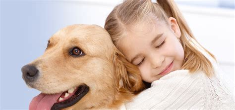 dogs are loyal image gallery loyal