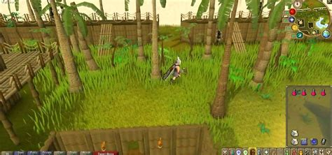 How To Make Lots Of Money Online - how to make lots and lots of money in the online game runescape 171 pc games