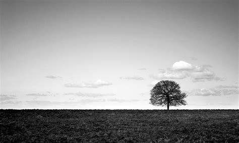 Landscape Photography Projects Fear And Loathing In Dayton The Bilerico Project
