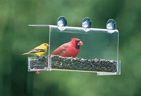backyard bird shop coupons bird seeds cardinals seasons creative love wild bird bird