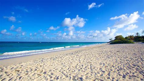 sand beaches silver sands beach in oistins expedia