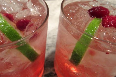 vodka tonic cranberry cranberry gin and tonics riegl palate