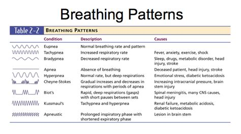 Pattern Breathing Definition | nursing 101 study guide 2015 16 smith instructor smith
