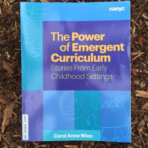 emergent curriculum in early childhood settings from theory to practice second edition books the power of emergent curriculum stories from early