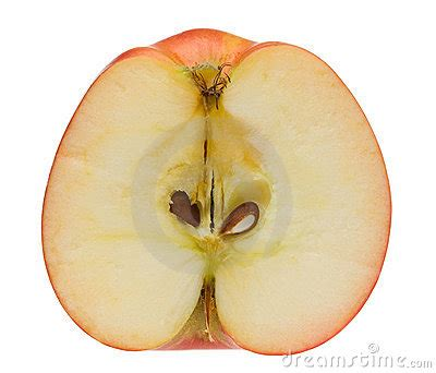 cross section of an apple macro of ripe red apple cross section stock photography