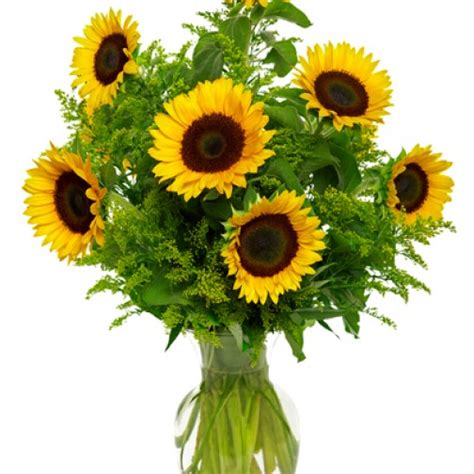 by special arrangement lagrange ga flower shop metter florist flower delivery by the flower gallery