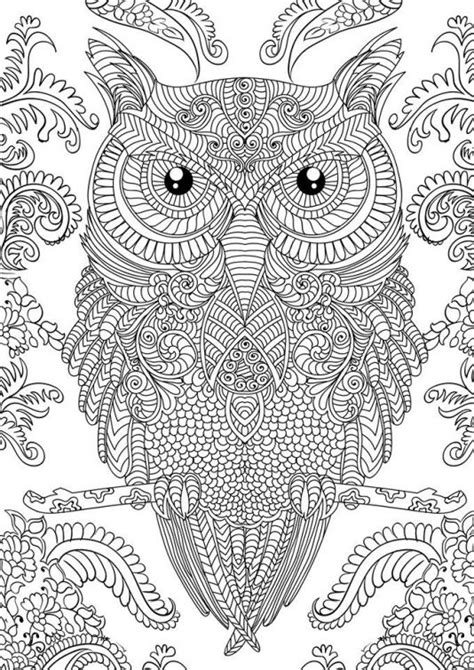 hard turtle coloring pages pinterest the world s catalog of ideas