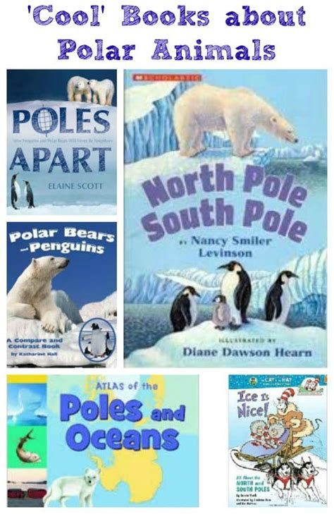 south books explore the and south pole books about polar