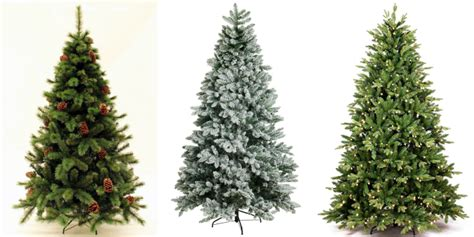 king of christmas cypress spruce christmas tree giveaway
