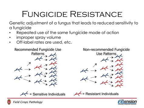 field crops fungicide information wisconsin field crops