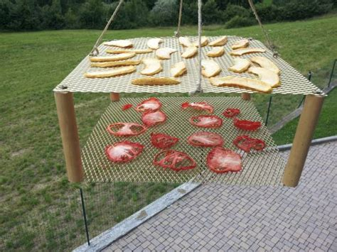 essiccatore alimentare essiccatore alimentare solare
