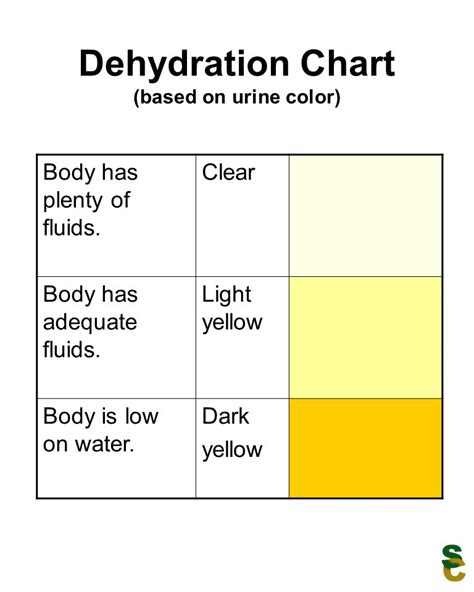 color of urine when dehydrated dehydration chart based on urine color ppt