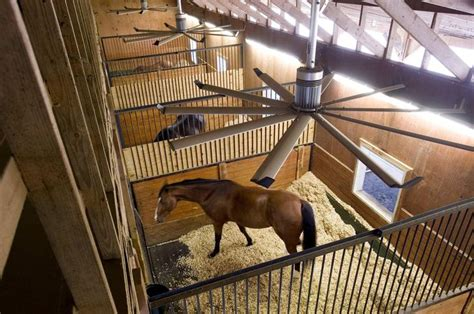 best horse stall fans 40 best big on the farm images on pinterest horse