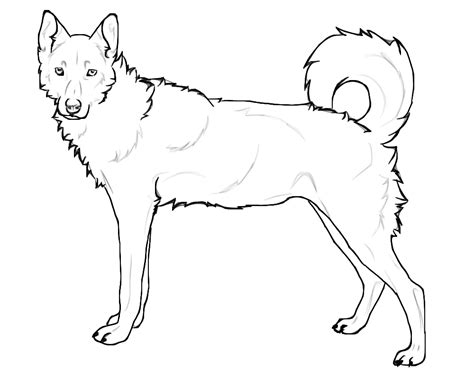 coloring pages of husky dogs husky coloring pages bestofcoloring