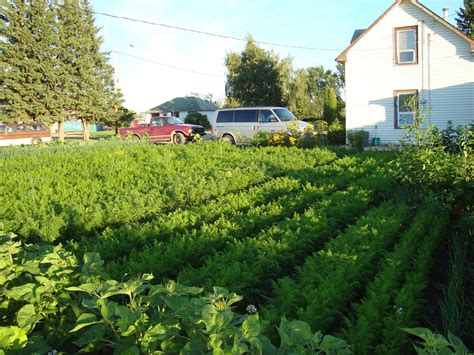 How Many Square Feet In Half An Acre by Get Started With Spin Farming Cornell Small Farms Program