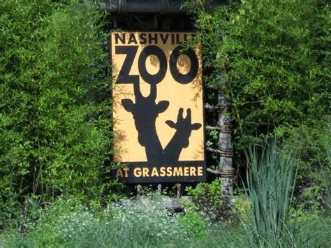 nashville hours nashville zoo at grassmere hours and coupons choice your