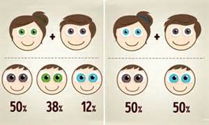 eye color chances the eye colour combinations your baby could based on
