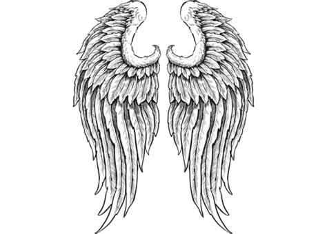 angel tattoo png outline of angel wings clip art outline of angel wings