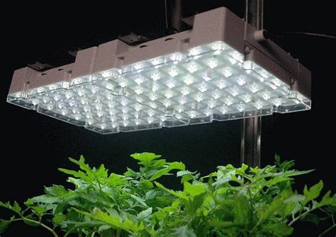 best indoor grow lights 2017 top rated indoor grow