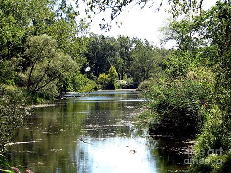 Nature S Pantry New Ny by Pond At Tifft Nature Preserve Buffalo New York Photograph