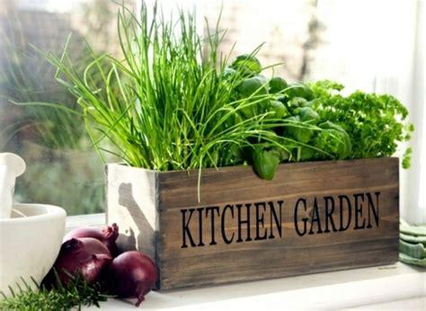 herb garden ideas for wonderful feng shui kitchen
