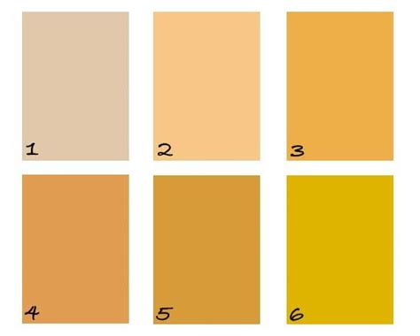 soft marigold benjamin moore pin by pinpoint painting llc on color inspiration pinterest