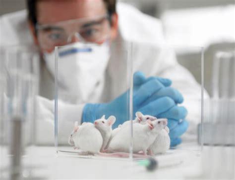 E M O R Y Evantons revierten los s 237 ntomas autismo en ratones